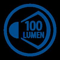 LIGHT OUTPUT LUMENS (100lm)
